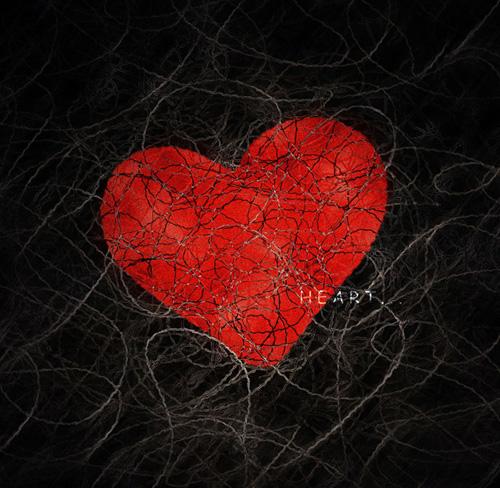 4566336_4257885_20051125_loris_wallpapers_ru_heart_1024x768_A94089.jpg (500x488, 138Kb)