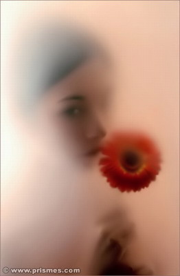 flower.jpg (262x400, 15Kb)
