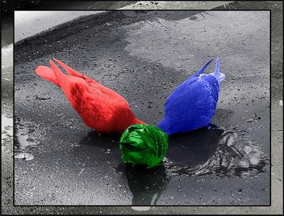 голуби.jpg (400x304, 71Kb)