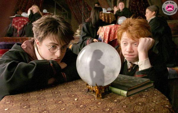 harry_potter.jpg (600x382, 71Kb)