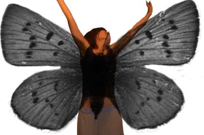 бабочка2.jpg (400x265, 75Kb)