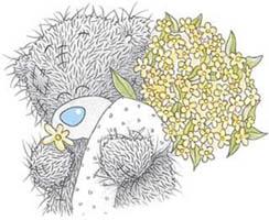 teddy49.jpg (244x200, 20Kb)