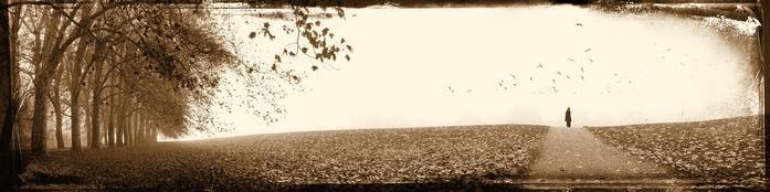 холодная осень.jpg (697x174, 71Kb)