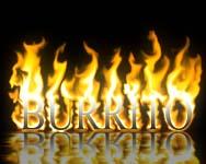 bur-fire-c.jpg (188x150, 25Kb)