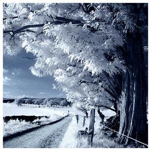 5317456_The_Blue_Season_by_x_horizon.jpg (300x300, 39Kb)