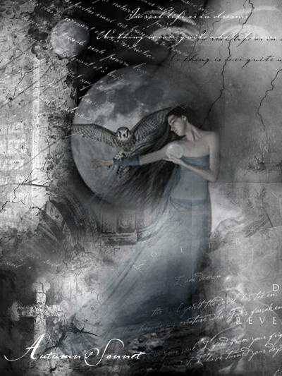 http://img.liveinternet.ru/images/attach/2/5633/5633675_2788046.jpg