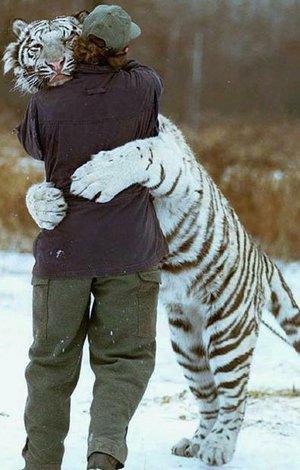 hug__by_unit_tx_12.png (300x470, 34Kb)