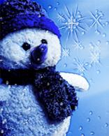 4647845_4553799_Snowman_12_detail_en_GLOBAL.jpg (156x195, 43Kb)
