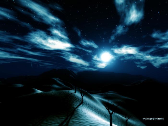 night_sun.jpg (700x525, 98Kb)
