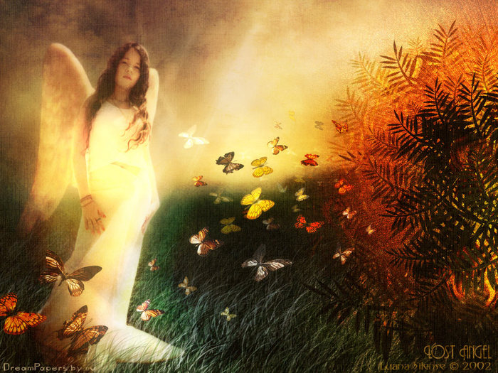 wallpapers_ru_020723_luana_lost_angel.jpg (700x525, 128Kb)