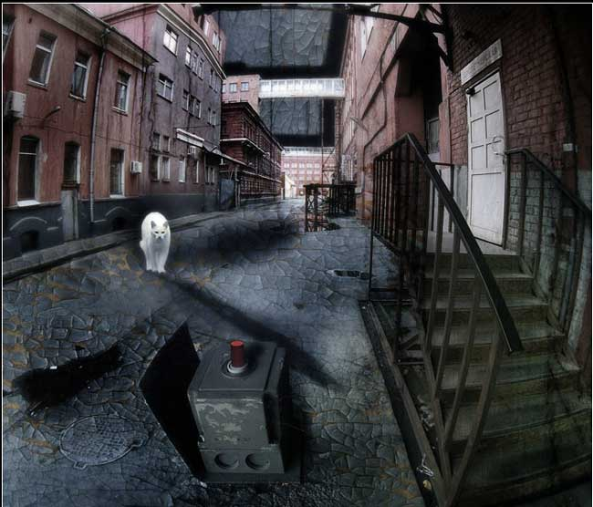белый-кот.jpg (650x556, 48Kb)