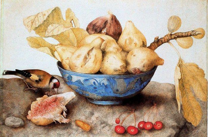 Giovanna Garzoni1600-1670Птица и фрукты.jpg (699x463, 95Kb)