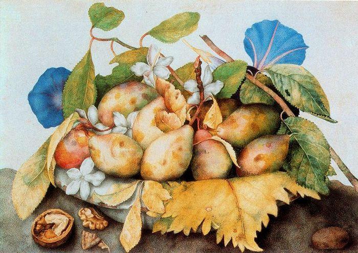 орехи, фрукты и жасмин Giovanna Garzoni.jpg (700x496, 97Kb)