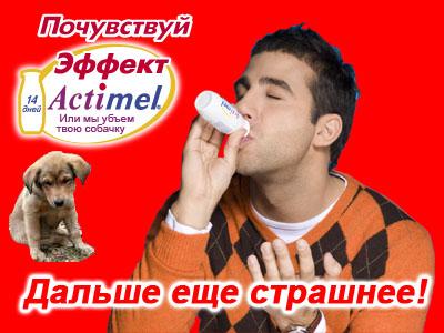 dog.jpg (400x300, 65Kb)