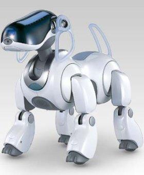 dietdog.jpg (280x341, 15Kb)