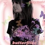 butterfly.jpg (150x150, 55Kb)