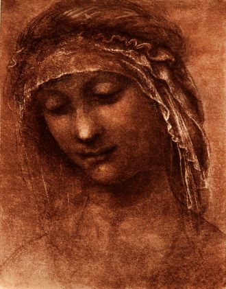 da_Vinci Head of a Woman Three-Quarters to the Left.jpg (330x421, 36Kb)