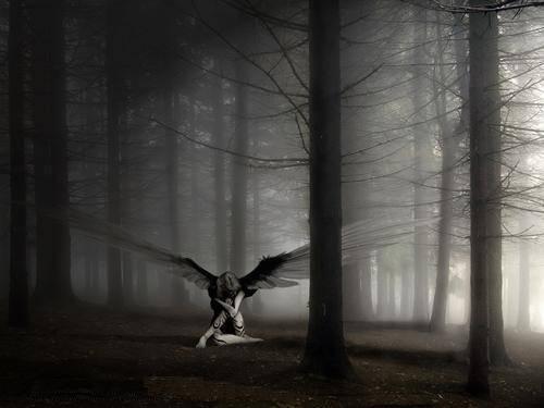 ангел.jpg (500x375, 21Kb)