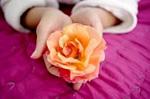 flower.jpg (150x99, 13Kb)