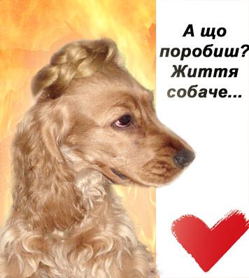 yulya.jpg (356x397, 35Kb)