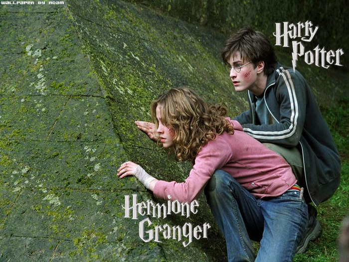 harry-hermione.jpg (700x525, 140Kb)