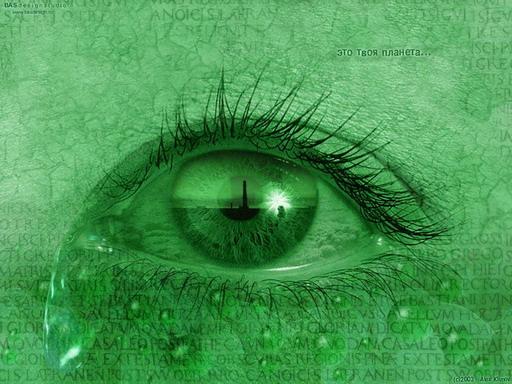 Eye.jpg (512x384, 81Kb)