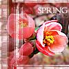5317407_spring.jpg (100x100, 35Kb)