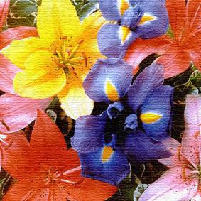 цветы.jpg (283x283, 157Kb)