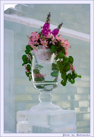 ice_flowers.jpg (401x584, 70Kb)
