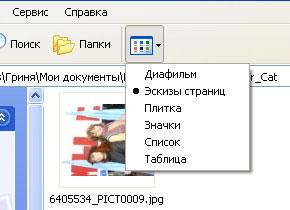 tgc1.jpg (290x210, 16Kb)