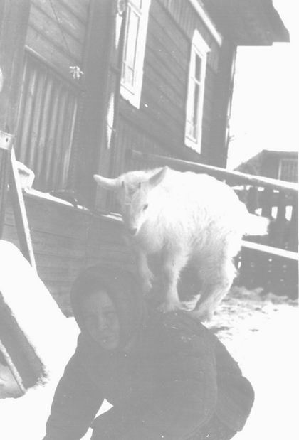 Дневник мама с козлёнком.jpg (420x619, 24Kb)