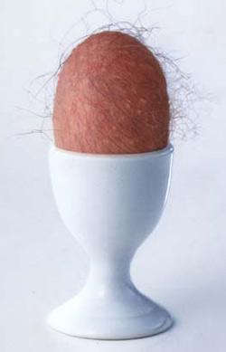 egg.JPG (250x389, 8Kb)