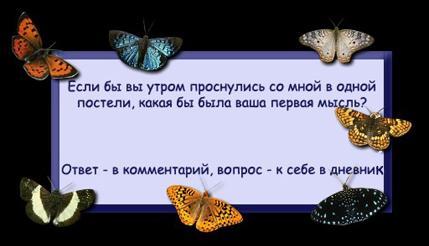 6205537_5939857_4792605_3427955_3426961_Fignya.jpg (429x246, 17Kb)