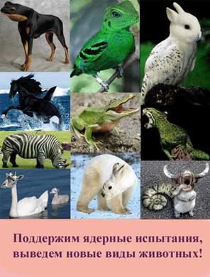 новые виды животных.JPG (296x390, 22Kb)