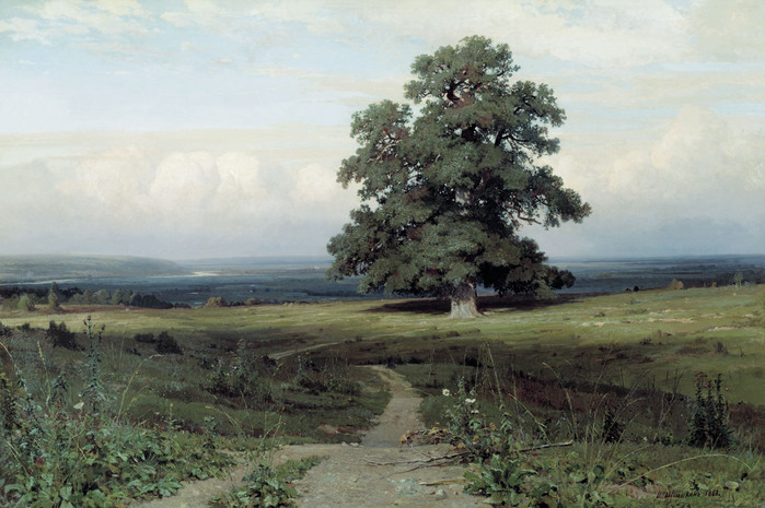 Иван ШИШКИН (1832 — 1898). «Среди долины ровныя…». 1883.jpg (699x465, 122Kb)