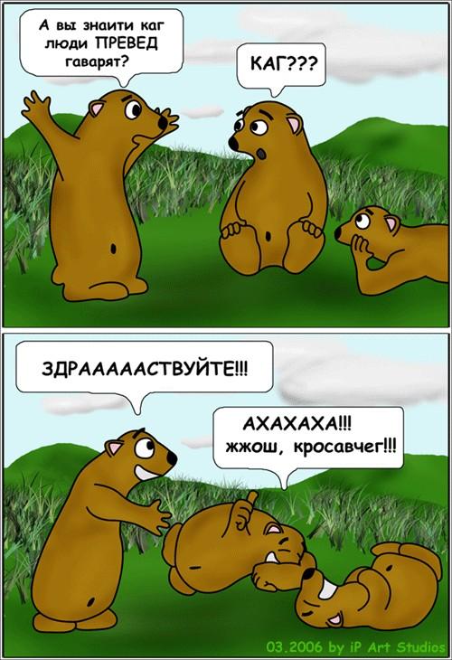 bear_comics01.jpg (500x730, 110Kb)