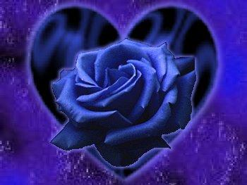 Картинки синие розы - 5e02