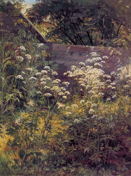шишкин Уголок заросшего сада. Сныть-трава 1884.jpg (418x560, 64Kb)