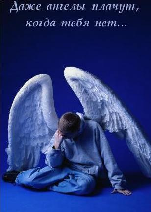 Даже ангелы плачут, когда тебя нет.jpg (308x433, 19Kb)