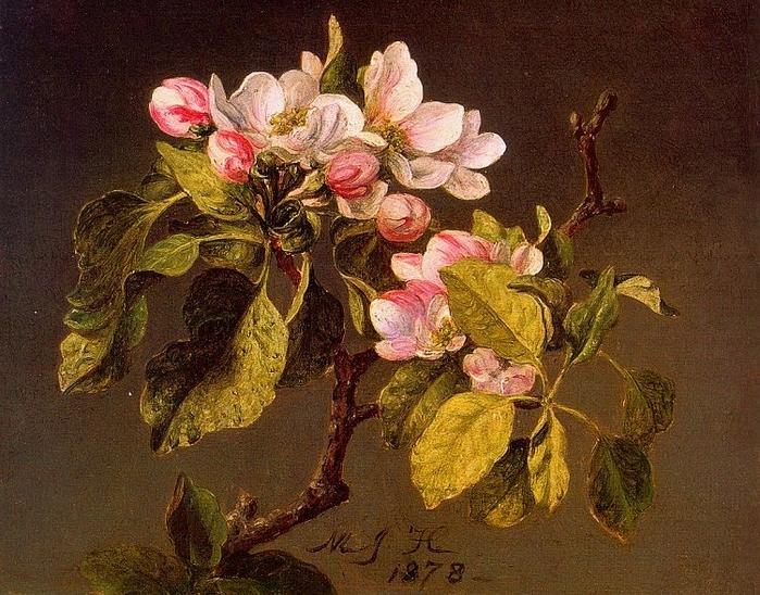Мартин Джонсон Хэд Цветущая яблоня 1878.jpg (699x548, 359Kb)