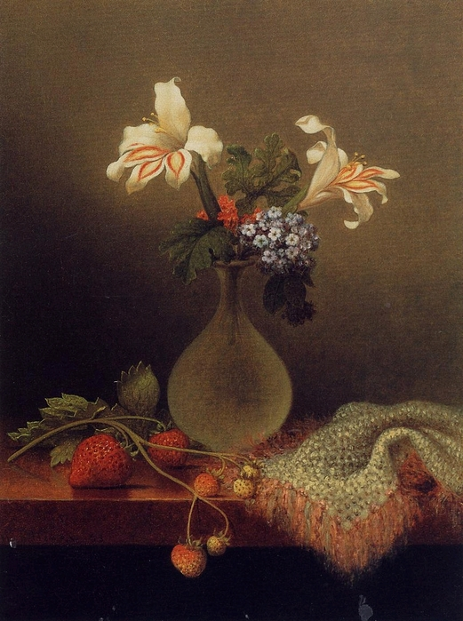 A Vase of Corn Lilies and Heliotrope - (Martin Johnson Heade.jpg (521x699, 286Kb)