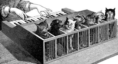 cat_piano.jpg (450x244, 44Kb)