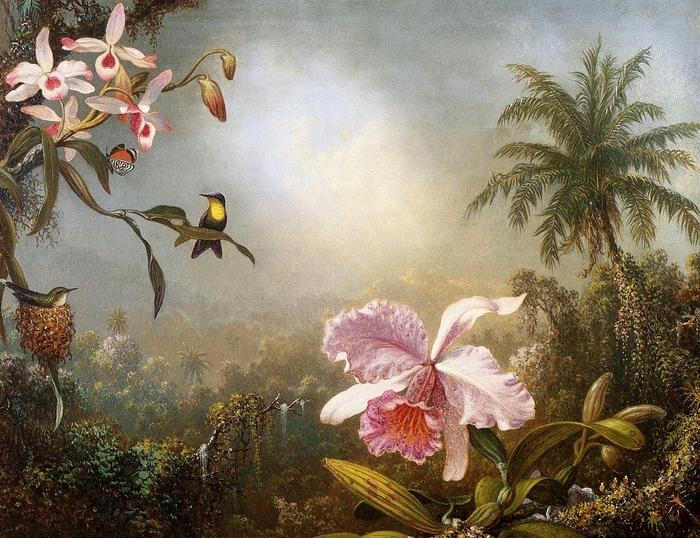 Orchids, Nesting Hummingbirds and a Butterfly - (Martin Johnson Heade - 1871.jpg (700x538, 357Kb)
