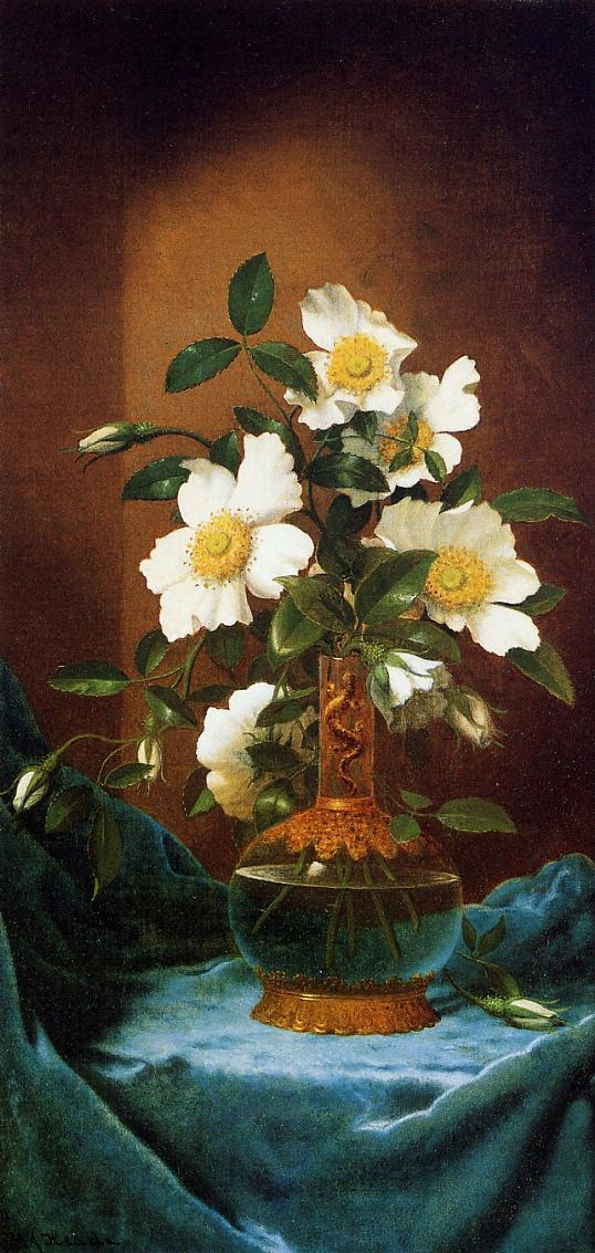 White Cherokee Roses in a Salamander Vase - (Martin Johnson Heade - circa 1883-1895.jpg (538x1133, 476Kb)