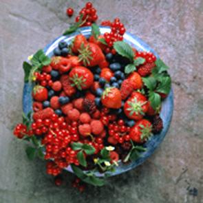 ягоды.jpg (295x295, 111Kb)