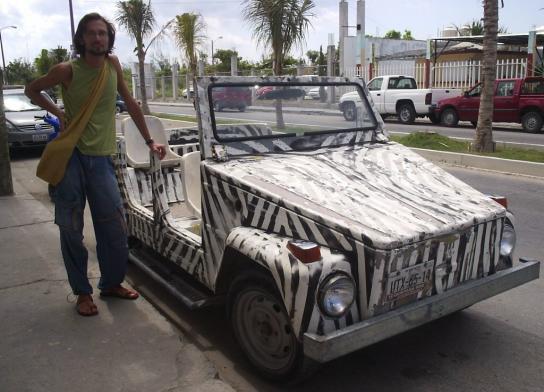Mexican Zebra1.JPG (544x392, 43Kb)