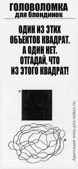 (260x560, 22Kb)