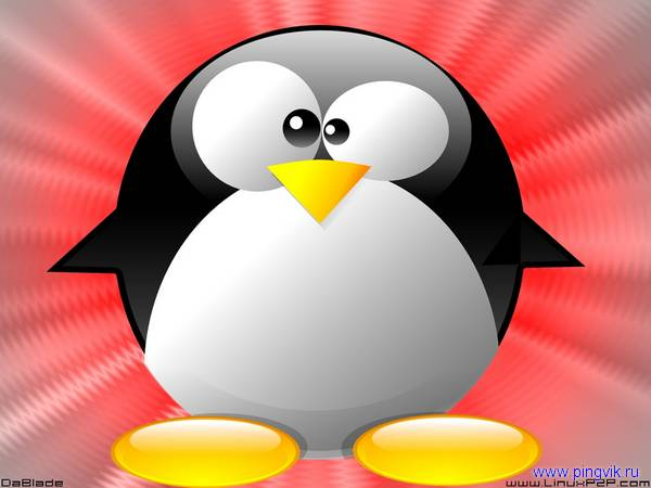 Скачать картинку пингвина 6
