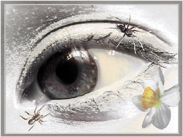 http://img.liveinternet.ru/images/attach/3/7133/7133872_640_54298.jpg