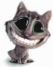 Котик.jpg (176x220, 7Kb)